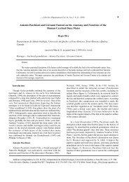 9 Antonio Pacchioni and Giovanni Fantoni on the Anatomy and ...
