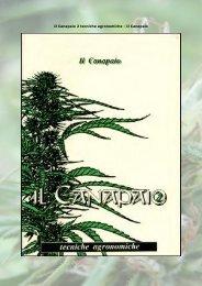 Il Canapaio 2 tecniche agronomiche - Il Canapaio - infoshocktorino