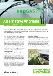 Produktblatt Alternative Antriebe