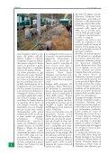 mostra nazionale 2006 - Associazione Nazionale Allevatori Bovini di ... - Page 4