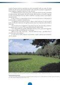 LE RISORGIVE: - Consorzio bonifica pedemontano brenta - Page 5