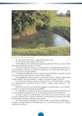 LE RISORGIVE: - Consorzio bonifica pedemontano brenta - Page 6