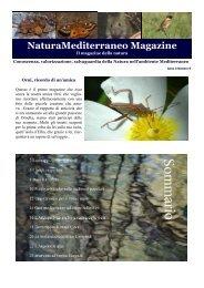 Magazine n.9 - Natura Mediterraneo