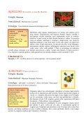 Famiglia - Ilbrolo.it - Page 4