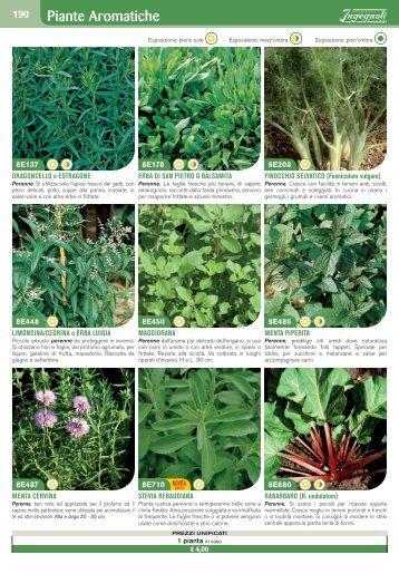 Piante da Giardino e Aromatiche - Ingegnoli