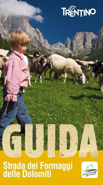 SCARICA LA GUIDA COMPLETA in formato PDF - Strade del Vino e ...