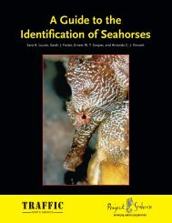 A Guide to the Identification of Seahorses