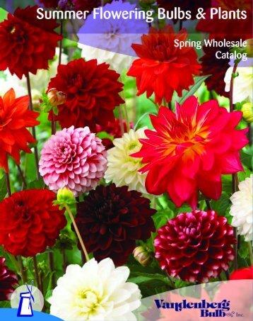 Spring 2010 - Vandenberg Bulb Co.