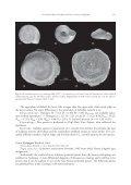 The continental malacofauna of Arabia and adjacent areas. I ... - Page 7