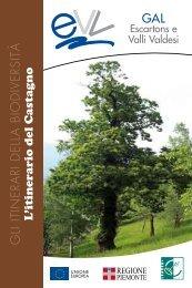 L'itinerario del castagno - Gal Escartons e Valli Valdesi