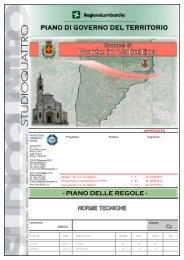 C2: Norme Tecniche - Comune di Ponte in Valtellina