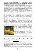 Ulteriore materiale informativo disponibile cliccando qui - Aiab Veneto - Page 4