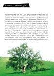 Ambientarsi - Superiori - Regione Calabria - Page 7