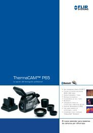 ThermaCAM™ P65