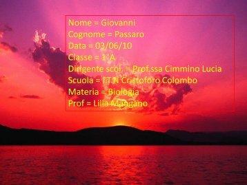 I vulcani - Iscolombo.it