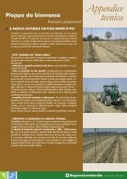 pioppo da biomassa rot. quinquennale.pdf - Er - Energie Rinnovabili
