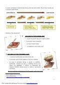 L'attività vulcanica - Italiano per lo studio - Page 6