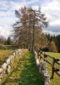 recinzioni di legno - Page 5