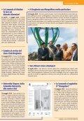 arriva Decathlon - Comune di Brugherio - Page 4