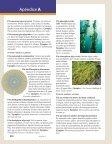 apendices.pdf (25865.0K) - Page 5