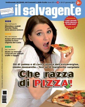 Il Salvagente n° 3 - Modenacinquestelle.it