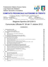 Comunicato n. 28 - FIGC Trento