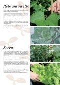Letto di coltura rialzato GrowCamp - Page 5