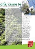MANUALE PER LA COLTIVAZIONE DELL'ORTO - Natria - Page 3