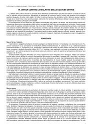 14 Colture ortive e Fragola - Associazione Studenti di Agraria IAAS ...