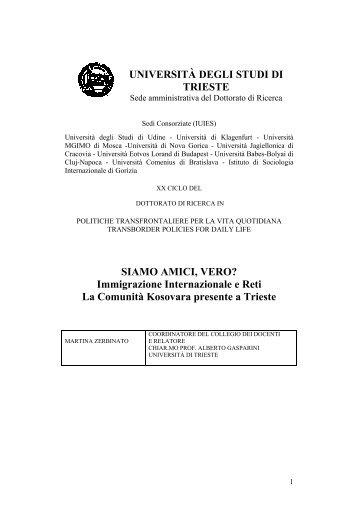 tesi_ finale_zerbinato.pdf - OpenstarTs - Università degli Studi di ...
