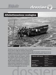 Alfabetizzazione ecologica - Conflitti Dimenticati