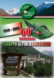 60 FONDAZIONE ALPINI DI RONCOBELLO - Alpini Alta Valle ...