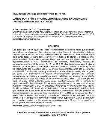 Daños por frío y producción de etanol en aguacate - Avocadosource ...