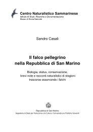 Il falco pellegrino nella Repubblica di San Marino - Centro ...