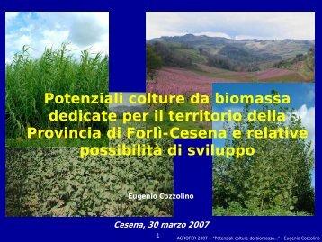 Potenziali colture da biomassa dedicate per il territorio ... - Agrofer