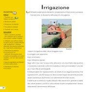 Irrigazione - Lavorosano.eu
