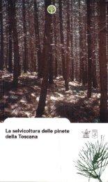 Capitolo sul pino domestico a cura di Livio Bianchi, Gianluca ...