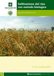 Coltivazione del riso con metodo biologico - Dote Regione Lombardia