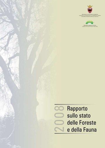 Scarica il Rapporto - Legno Trentino