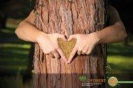 de la naturaleza al corazón, del corazón a ti.