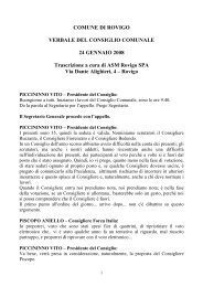 Anno 2008 - Comune di Rovigo