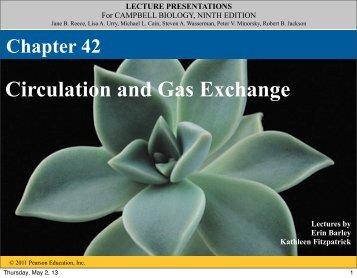 42 Circulatory and Respiratory.pdf - ebiology