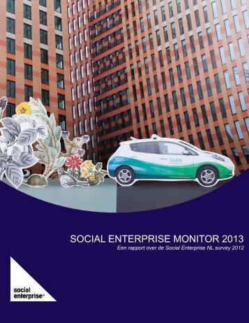 SOCIAL ENTERPRISE MONITOR 2013