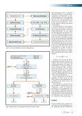 Wasserstoff aus Müll - THERMOSELECT - Seite 3