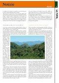 N. 9 - dicembre / December 2007 - La Venta - Page 7