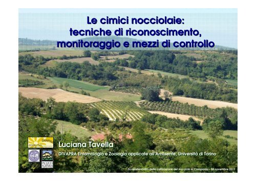 Le cimici nocciolaie - Regione Campania
