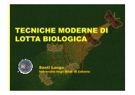18TECNICHE MODERNE LOTTA BIOLOGICA - Dipartimento di ...