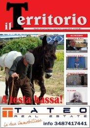 Download numero 4 (maggio 2010) - Il-territorio.it