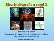 Biocristallografia a raggi X