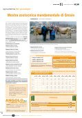 2 - Associazione Provinciale Allevatori Sondrio - Page 6